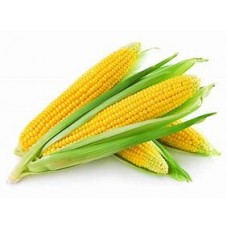 Sweet Corn 1each