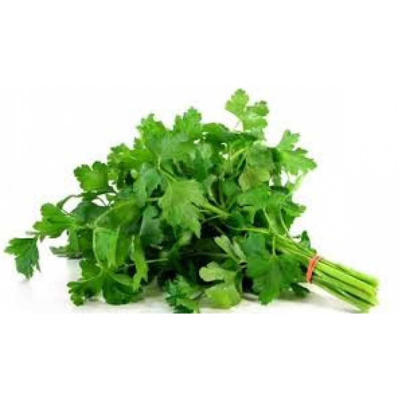 parsley continental 1 bunch