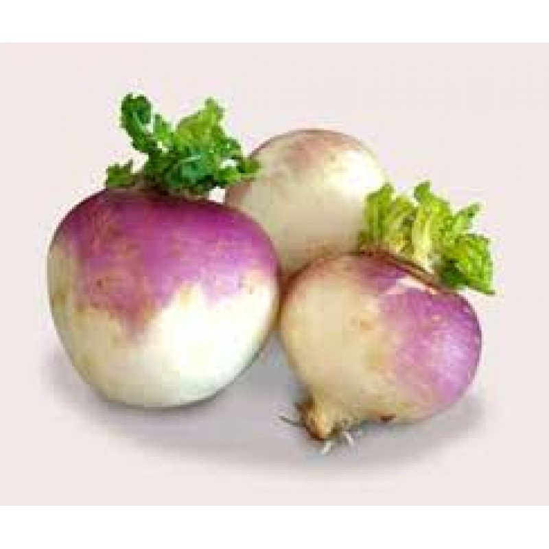 Turnip 1 Each